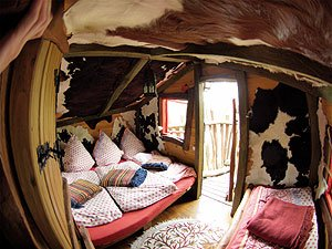 wo die h user auf b umen wachsen ottokar. Black Bedroom Furniture Sets. Home Design Ideas