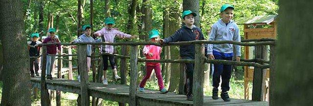 Der Wald-Endeckerparadies für Kinder
