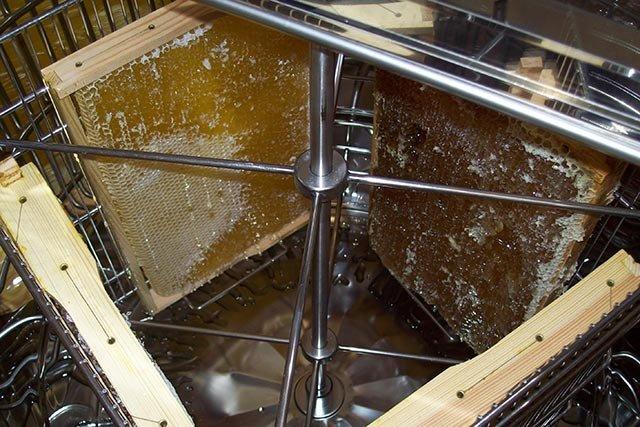 Ausschleudern des Honigs