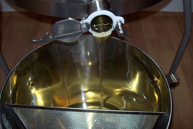 Honig fließt in Siebkübel