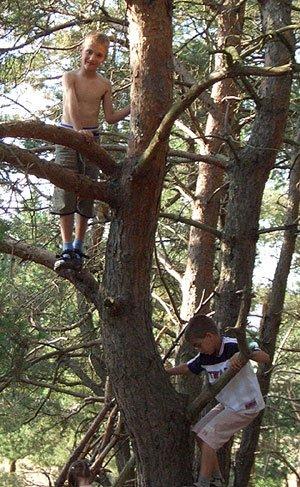 Beim Klettern kommen Kinder hoch hinaus.