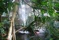 Biosphäre Potsdam Wasserfall
