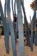 Spielplatz Sonne, Wind und Wolken in Buckau