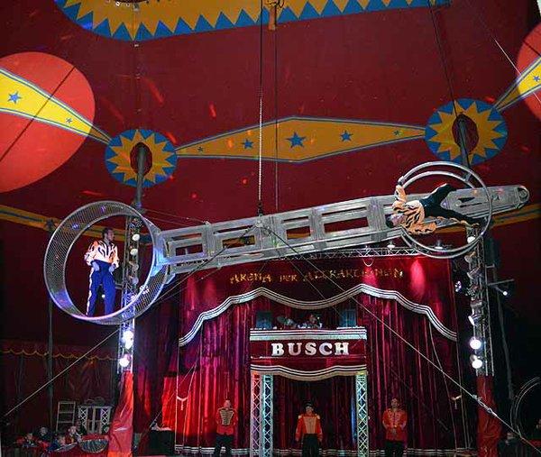 Circus Paul Busch