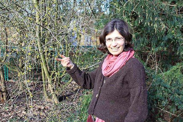 Yvonne Lücke