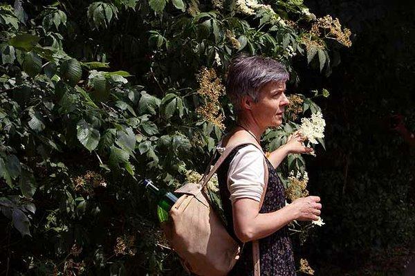 Kräuterwanderung mit Claudia Schreiner