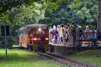 Parkeisenbahn Krumbholz in Halle