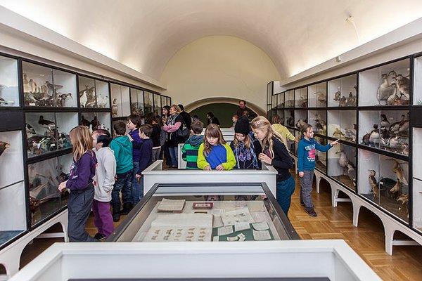 Märchen für alle im Naumann-Museum