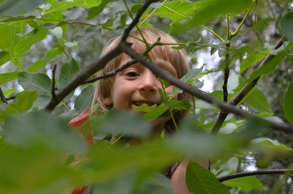 Kindergeburtstag direkt in der Natur