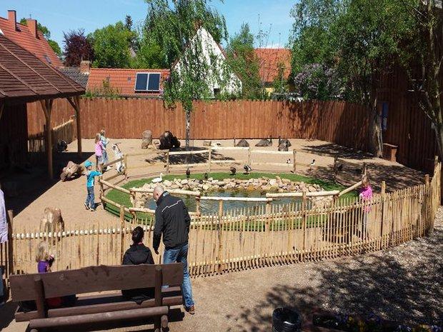 Erlebnistierpark Memleben