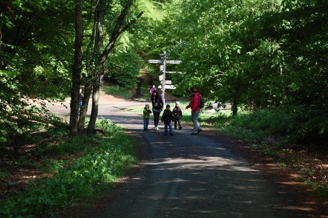 Wandern um Bad Harzburg