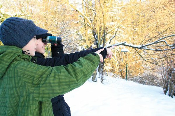 Wintervogelbeobachtung