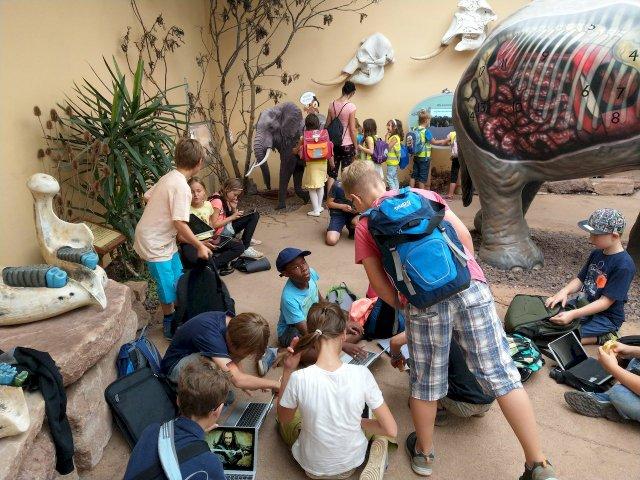 Zooprojekt an der Dreisprachigen Internationalen Grundschule