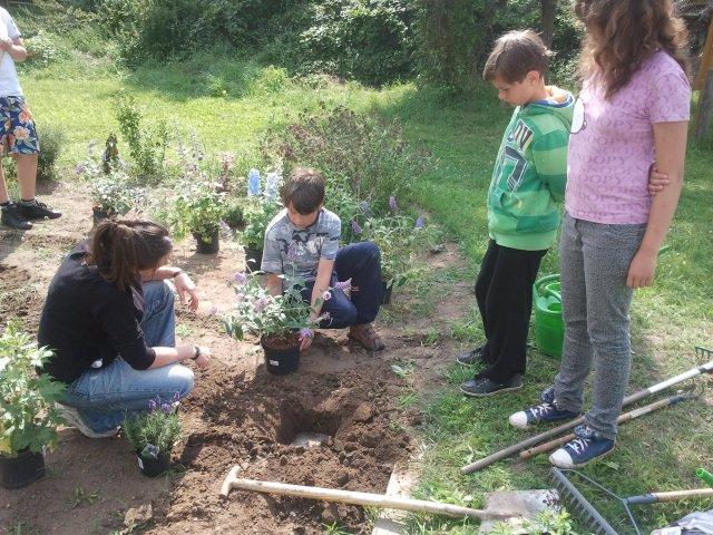 Garten-Tag im Ökogarten