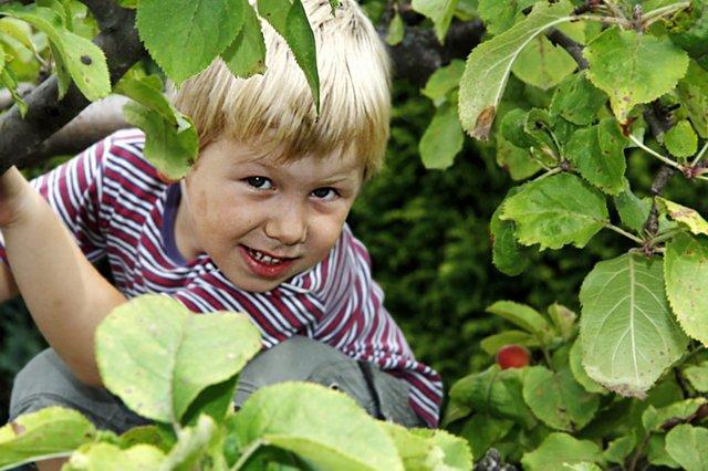 Mit ein bisschen Anleitung haben auch Kinder Freude an der Gartenarbeit.