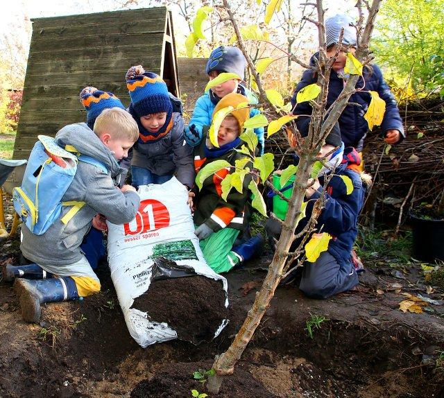 Kita Spielkiste - Kinder beim Pflanzen eines Baumes
