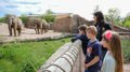 Africambo-Safari