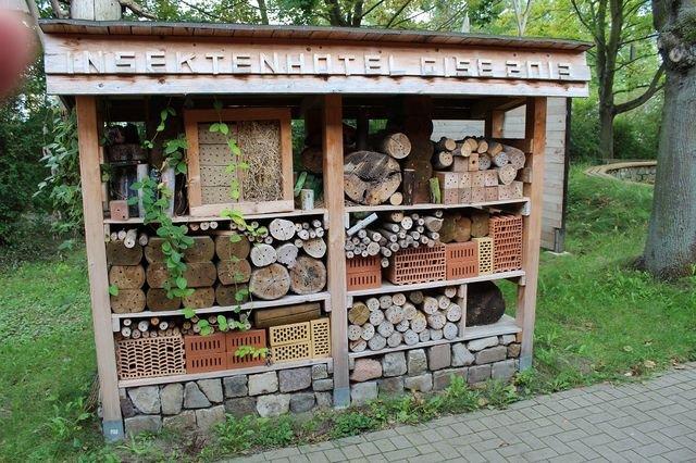 """Schulgarten der Förderschule (GB) """"Hugo Kükelhaus"""""""