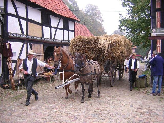 Erntefest im Freilichtmuseum Diesdorf